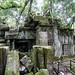 The Jungle-like ruin of Beng Mealea in Cambodia-9