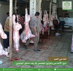 1 (emaar_alsham) Tags: eid korban emaar         emaaralsham