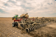 Air Drill Seeding (www.toddklassy.com) Tags: autumn tractor west men green fall field horizontal rural season outdoors montana mt farm wheat country farming working seed nobody farmland equipment machinery rows havre western growing farmer organic prairie agriculture plains laredo planting cultivation agricultural johndeere goldentriangle gregoire greatplains cultivated cultivate implement winterwheat seeding airdrill notill grower hillcounty cerealcrop colorimage seeder aircart countryskde