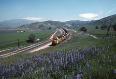ATSF Bealville, CA on April 10, 1987 (railfan 44) Tags: santafe atsf