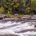 ohiopyle falls 04