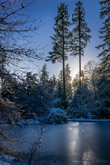 A Cold Afternoon (Don White (Burnaby)) Tags: centralpark sigma30mmf28 upperpond ice sunlight pond twilight