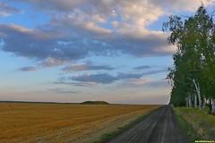 Ветер попутный и мы довольно быстро пересекаем асфальт в сторону села Пчелиновка и уходим в бесконечные здешние поля. Грунтовок здесь масса и на любой вкус, главное выбрать свою, единственно правильную.