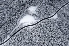 Lines (www.oberschneider.com - Christoph Oberschneider) Tags: aerial drone birdseyeview birdseye topdown drohne djiphantom4pro phantom4pro drohnenfotografie snow winter winterwonderland winterlandscape road trees lines austria salzburg