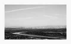 Recession (bnishimoto) Tags: fuji fujifilm myfujifilm xpro2 50230mm acros photoessay shorelinebaytrail charlestonslough mountainview bayarea landscape blackandwhite bw