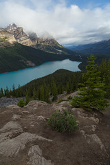 Peyto Morning (Ken Krach Photography) Tags: banffnationalpark peytolake