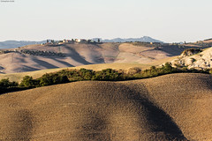 IMG_3901-1ri (kleiner nacktmull) Tags: apsc bunt canon camera colourful colorful color colour dslr dawn dämmerung abend abends abenddämmerung europa europe eos farbig flickr foto hügel hills italia italien italy tuscany toscana toskana chiusure senesi cretesenesi crete asciano braun brown kleinernacktmull kolle kamera lens objektiv photo stephankolle stephan 60d 70300mm 2016 häuser houses sunset sonnenuntergang landscape landschaft