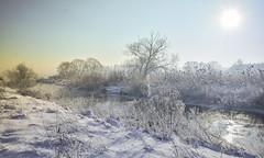 my winter (Beata Jakubas) Tags: beata jakubas beatajakubas winter nikon snow cold landscape view silesia