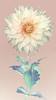 Cafe Au Lait (brianrosshaslam) Tags: dahlia cafeaulait flower floral