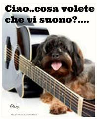 https://www.facebook.com/MossoTiziana/ #Tiziana #Mosso #Tizi #Twister #Titty #love #dog #friend #canzon #suonare #frase #aforisma #citazione #buongiornoatutti (tizianamosso) Tags: citazione tiziana canzon suonare titty twister tizi mosso love buongiornoatutti frase friend aforisma dog