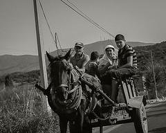 _NIK3102-bn (nikdanna) Tags: monocrome blackandwhite family albanian people horse chariot albania persone famiglia cavallo carro nikdanna