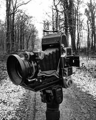 Moskva II (salparadise666) Tags: nils volkmer moskva 2 folding camera vintage 6x9 medium format bw monochrome 120 rollfilm russian kmz