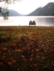 Crescent Lodge (Wiley C) Tags: crescentlake bench leaves olympicnationalpark washington october2016