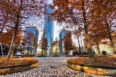 Fall Steel (AaronEden) Tags: ifttt 500px fall leaves trees stones skyscraper sunset poland warsaw park blue orange autumn city architecture building