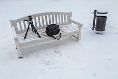 Tripod And Camera Bag On The Bench (AudioClassic) Tags: bench tripod camerabag manfrotto evening estonia winter park tallinn kadriorg nature snow road peaceful perspective hike landscape outdoors seasons walkway cold coveredwithsnow january benches foliage snowscene nobody europe outdoor tourism ancient vacation travel footpath