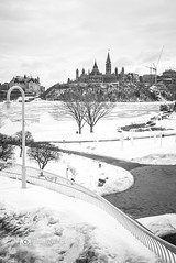 Parliament from the History Museum-3 (Dani_Girl) Tags: ottawa parliamenthill peacetower downtown parliamentbuildings snow winter ©2017danielledonders