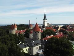 Tallinn, Estonia (Shaun Smith-Milne) Tags: tourelle turret tour tower medieval médiéval vieilleville oldcity tallinn estonia estonie scandinavia scandinavie baltique baltic arbres trees bridseye ville sea mer city capital capitale shrubbery massif
