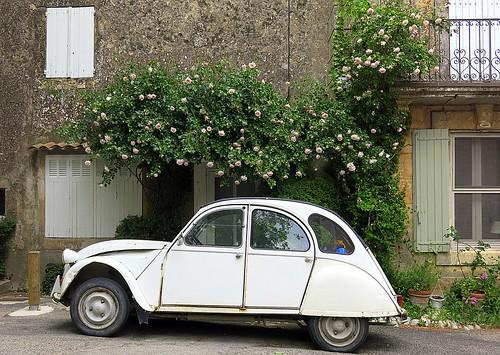 Vintage: Saignon, Vaucluse, Provence