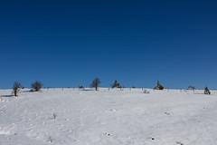 Manjača (Damir Dj) Tags: manjača planina balkan balkans bosnia bosna republika srpska snijeg zima nebo winter 2017 nature landscape panorama