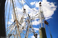 IMG_1888 (Blue Turtle Trawler) Tags: fortmyersbeach shrimpboats sh