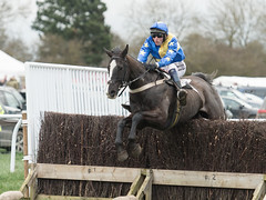 Bedford Forrest and Will Milburn (Steve Barowik) Tags: yorkraces racecourse grandstand horse jockey trainer groom cropframe saddle plate whip hunter chaser hound pointtopoint point2point stevebarowik barowik 70200mmf28vrii jorvik ebor eboracum jump fence hurdle canter hack sbofls26 nikond500 quantumentanglement wonderfulworld unlimitedphotos flickrelite dx westofyore hunt askhambryan