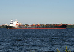 EAGLE FORD in New York, USA. August, 2015 (Tom Turner - SeaTeamImages / AirTeamImages) Tags: nyc usa newyork water port bay harbor marine ship unitedstates harbour transport vessel spot anchorage pony maritime transportation anchor statenisland bigapple narrows tanker spotting waterway stapleton tomturner eagleford