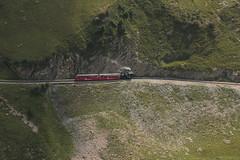 BRB Brienz - Rothorn - Bahn Dampflokomotive H 2/3 Nr. 15 mit Taufname Stadt Kanaya ( Hersteller SLM Nr. 5690 - Baujahr 1996 - lbefeuert ) im Berner Oberland im Kanton Bern der Schweiz (chrchr_75) Tags: schweiz switzerland suisse swiss eisenbahn august steam christoph svizzera bahn schweizer vapor brb locomotora dampflok dampflokomotive suissa 2015 zahnradbahn dampfmaschine vapeur stoomlocomotief  chrigu vapore  bahnen kantonbern chrchr hurni chrchr75 chriguhurni albumbahnenderschweiz albumdampflokomotiveninderschweiz chriguhurnibluemailch albumbahnbrbbrienzrothornbahn albumzahnradbahnenschweiz albumbahnenderschweiz2015712 albumzzz201508august