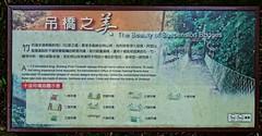 DSC02256ce (Alan A. Lew) Tags: ruili taiwan alishan 2015