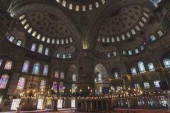 turkey_160715_3368