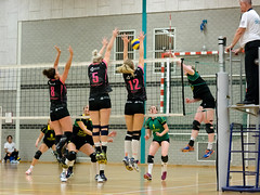 P9190866 (roel.ubels) Tags: sport donna flamingos volleyball prima 56 volleybal huizen kaas 2015 topsport gennep topklasse picamare