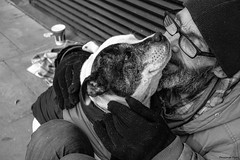 """""""Homeless but we have each other"""" (Pensioner Percy, very slow at the moment) Tags: street blackandwhite dog dogs manchester homeless streetlife center arndalecentre beggars monocrome livingrough rx100m3 sonydscrx100m3"""