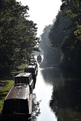 Misty Canal Morning