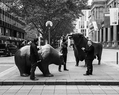 Taking the bear, I mean the bull by the horns (andre.douque) Tags: bear street frankfurt streetphotography bull stockexchange brse ffm