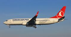 TC-JHT (Ken Meegan) Tags: dublin boeing turkish thy 737 b737 737800 boeing737800 boeing737 b737800 turkishairlines 42001 b7378f2 7378f2 thyturkishairlines boeing7378f2 tcjht 1112015