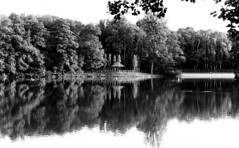 (Angela Schlafmtze) Tags: winter berlin natur natura inverno landschaft wald paesaggio bosco silenzio berlino ruhe tranquillit erleichterung contemplazione betrachtung sollievo stillschweigen ruhezustand statodicalma