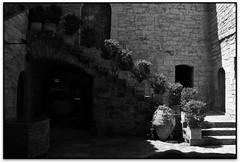 Pia Almoina, Banyoles (Jessður Águstson) Tags: bw españa byn museum canon spain museu gothic catalonia bn catalunya museo cataluña eos20d gotico gotic banyoles espanya tamron18200 elsenyordelsbertins gironaprovincia pladelestany