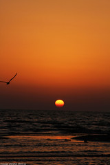 sea and sunset  (mosa3ad alshetwi) Tags: city travel light sunset sea summer two sky sun beach water girl beautiful night clouds other  each  the  complement