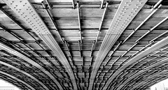 TOKYO BRIDGE SUMIDA RIVER BLACK AND WHITE (patrick555666751) Tags: bridge white black japan river tokyo asia patrick pont and roger japon sumida