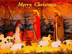 Ostseetroll wishes you a Merry Christmas - Frohe Weihnachten - God Jul - Glædelig jul - Hyvää Joulua - Joyeux Noël - Καλά Χριστούγεννα - Gleðileg jól -  Buon Natale - Bon Nadal - Prettige Kerstdagen - Feliz Natal (Ostseetroll) Tags: deu deutschland geo:lat=5405165414 geo:lon=1075243950 geotagged haffkrug scharbeutz schleswigholstein christmas weihnachten