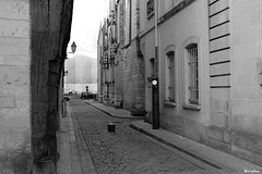 Rue Littré (vruelico) Tags: art artwork architecture photo photographie photography picture street black white tours france view fuji x100t vruelico
