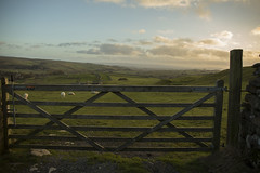 bd14 (ShedSpaceProjects) Tags: yorkshire winter wintersun sunset nature countryside england malham sheep blueskies clouds sky travel adventure road fields rollinghills outdoor landscape