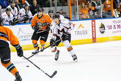 "Missouri Mavericks vs. Quad City Mallards, December 31, 2016, Silverstein Eye Centers Arena, Independence, Missouri.  Photo: John Howe / Howe Creative Photography • <a style=""font-size:0.8em;"" href=""http://www.flickr.com/photos/134016632@N02/31972632491/"" target=""_blank"">View on Flickr</a>"