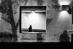 | Los Angeles, CA | 2017 ([DV8] David Patrick Valera) Tags: dv8street dv8 transsensor losangeles rangefinder fujixpro2 street streetphotography fuji photographers fujifilmxseries fujifilmxus davidpatrickvalera fujifilm humancondition