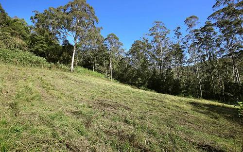 265 Bundewallah Road, Bundewallah NSW 2535