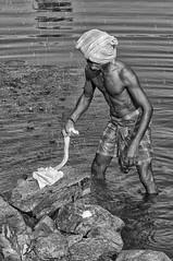 குறள் 79 (Arvind Balaraman) Tags: thirukkural thiruvalluvar tamilscripture anbudaimai kural79