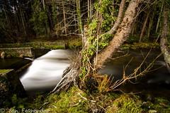 Seda en Naseiro. (xanfer) Tags: riolandro augas efectoseda landro vivero galicia españa
