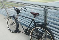 Wanderer (Hagbard_) Tags: wanderer rad bike velo fahrrad kriegsrad cycle dresden elbe wasser biking cycling
