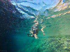 Snorkel - Cala Pregonda (Giovanna Gehring) Tags: praia beach islands spain espanha snorkel menorca cala baleares ilhas balearic pregonda