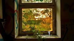 Nature And Dusk Industry (obscure.atmosphere) Tags: light sunset summer sun sunlight industry sol halloween window sunshine architecture germany atardecer deutschland evening abend licht soleil weird scary twilight mood sonnenuntergang place sundown dusk sinister sommer empty hamburg corridor atmosphere sunny eerie creepy spooky lumiere verano horror dämmerung 夏 sonnig sonne industria industrie 夕暮れ ocaso atmospheric crepuscule anochecer ete verlassen obscure ort 光 sonnenschein horreur ligero 일몰 gruselig 日 siniestro unheimlich sonnenlicht 日没 태양 빛 terrifiant horripilante 怖い ホラー 공포 황혼 여름에 소름