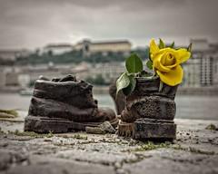 Holocaust Memorial (DASEye) Tags: holocaust nikon memorial hungary wwii budapest worldwarii ii ww challenge danube memorials davidadamson daseye 52in2015 52in2015challenge myfavoriteshotof2015